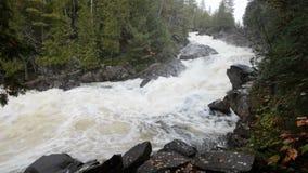 Een kleine cascade op een hooglandrivier vloeit door steenachtig rivierbed stock videobeelden