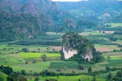 Een kleine die heuvel in de vallei, met bomen op de bodem en een grote omringende berg worden geplant Stock Afbeelding