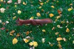 Een kleine eekhoornsprong Royalty-vrije Stock Foto's