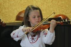 Een kleine fiddler Royalty-vrije Stock Afbeeldingen