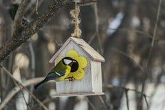 Een kleine gele mees zit op een geel vogel en eekhoornvoederhuis van triplex in het park royalty-vrije stock foto