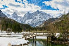 Een kleine houten brug in Julian Alps stock foto's