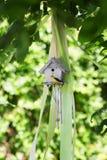 Een kleine houten grijze het nestelen doos met een gele vogel op de natuurlijke achtergrond Het mooie vogelhuis in het groene par Stock Foto's