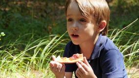 Een kleine jongen brengt tijd aan een picknick in het Park door Het kind bijt een stuk van pizza Voedsel en rust stock videobeelden