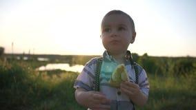 Een kleine jongen die een pastei op het gebied eten dichtbij hoge gras en vijver, langzame motie stock videobeelden