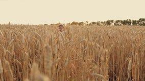 Een kleine jongen loopt om bij het tarwegebied bij zonsondergang te lachen stock footage