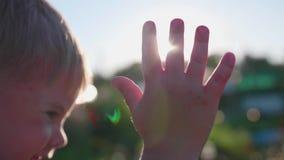 Een kleine kinderen` s pen die aan de zon golven De stralenpas door uw vingers Onthaal aan de Zon stock videobeelden
