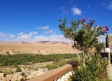 Een kleine oase in woestijn royalty-vrije stock foto