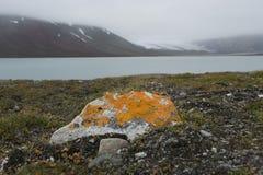 Een kleine oranje steen op de lege zeekust in het Noordpoolgebied stock foto's
