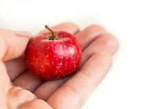 Een kleine paradijs rode appel in de palm van uw hand Hebzucht om klein te geven, royalty-vrije stock afbeeldingen