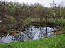 Een kleine rivier in de lente Royalty-vrije Stock Fotografie