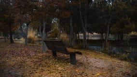 Een kleine stoel stock fotografie