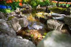 Een kleine stroom in Keukenhof tuiniert, Amsterdam Royalty-vrije Stock Afbeelding
