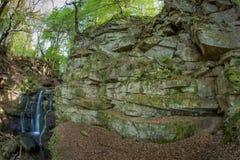 Een kleine stroom met watervallen in het hout Royalty-vrije Stock Fotografie