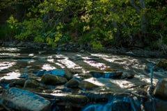 Een kleine stroom met watervallen in het hout Stock Foto