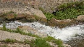 Een kleine stroom onder de stenen stock footage