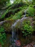 Een kleine stroom stroomt onderaan de mos-behandelde berghelling royalty-vrije stock afbeelding