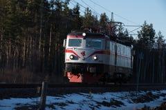 Een kleine trein die door een bos gaan Royalty-vrije Stock Afbeelding
