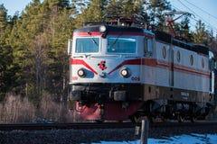 Een kleine trein die door een bos gaan Royalty-vrije Stock Fotografie