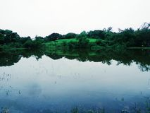 Een kleine vijver dichtbij Mumbai Sahar Arpot is een mooi gezicht royalty-vrije stock foto's