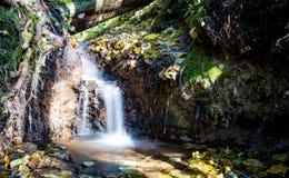 Een kleine waterval die in het bos is royalty-vrije stock afbeelding