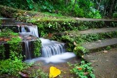 Een kleine waterval door de steentreden in de wildernis Royalty-vrije Stock Afbeeldingen