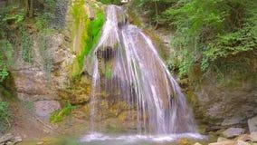 Een kleine waterval in het bos stock footage