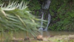 Een kleine waterval, in het midden van de bergen stock video