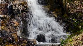 Een kleine waterval op de Italiaanse pre-Alpen stock footage
