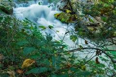 Een Kleine Waterval op een Wilde Stroom van de Bergforel royalty-vrije stock foto