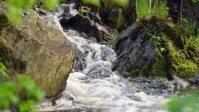 Een kleine waterval tussen rotsen stock videobeelden