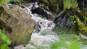 Een kleine waterval tussen rotsen stock video