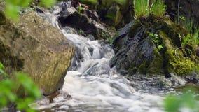 Een kleine waterval tussen rotsen stock footage