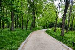 Een kleine weg voor het onderzoeken van het park, groene bomen, natuurlijke achtergrond stock fotografie