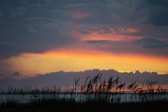 Een kleurrijke die zonsondergang over de oceaan achter de strandgrassen wordt gezien in Voet Myers, Florida Stock Afbeelding