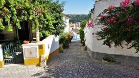 Een kleurrijke Straat in de middeleeuwse stad van Obidos, Portugal stock afbeeldingen