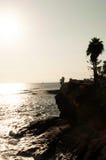 Een klip met een palm boven de oceaan op een zonnige dag Stock Foto