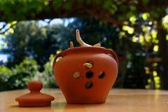 Een knoflookpot buiten op houten lijst, één van de bollen ontspruit stock foto's
