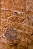 Een knoop in een stuk van hout Royalty-vrije Stock Foto's
