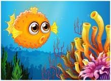 Een kogelvisvis dichtbij de koraalriffen stock illustratie