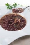 Een kom eigengemaakte Spaanse peperbonesoep met vlees Stock Foto