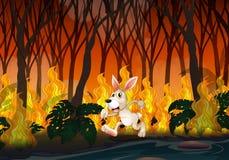 Een Konijn die in Wildfire lopen royalty-vrije illustratie