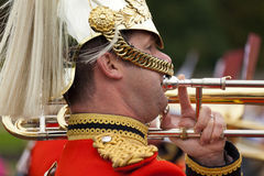 Een koninklijke Wacht bij Buckingham Palace Stock Afbeeldingen