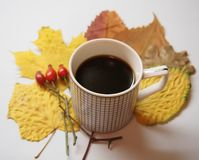 Een kop koffie en bladeren stock afbeeldingen