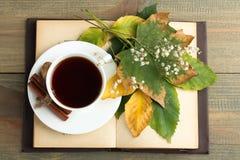 Een kop thee met een boek Stock Fotografie