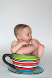 Een kop van Baby Royalty-vrije Stock Foto's