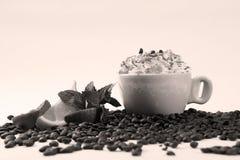 Een kop van cappuccino Stock Foto