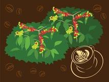 Een kop van Espresso van Koffieboon en Installatie Vectorillustratie Royalty-vrije Stock Foto