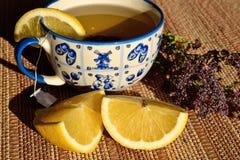Een kop van groene thee met citroen Thee met geneeskrachtige kruiden stock fotografie