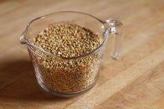 Een kop van haver, het basisingrediënt voor havermelk. Stock Fotografie